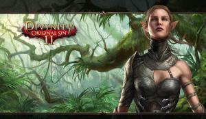 Test gry Divinity: Original Sin 2