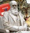 Darwin, wilki i poczta