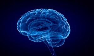 Jak zarchiwizować mózg i umieścić go w chmurze?