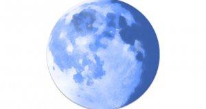 Serwer archiwalny przeglądarki Pale Moon zainfekowany