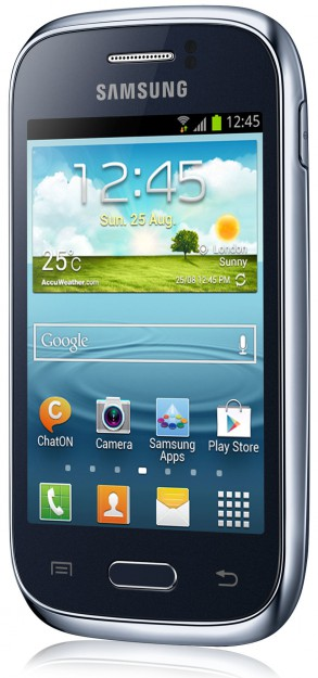 SAMSUNG S6310L Galaxy Young